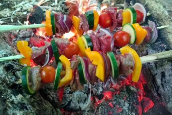 Beef and vegetable kebab - lunch in the woods