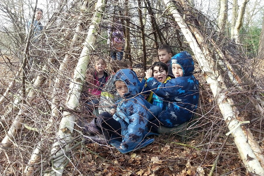 Shelter and den building