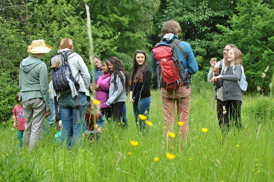 The Guardian top 10 group walks - Family friendly guided woodland walk in the Chilterns