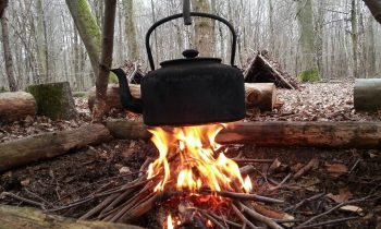 Bushcraft with David Willis in the Chilterns