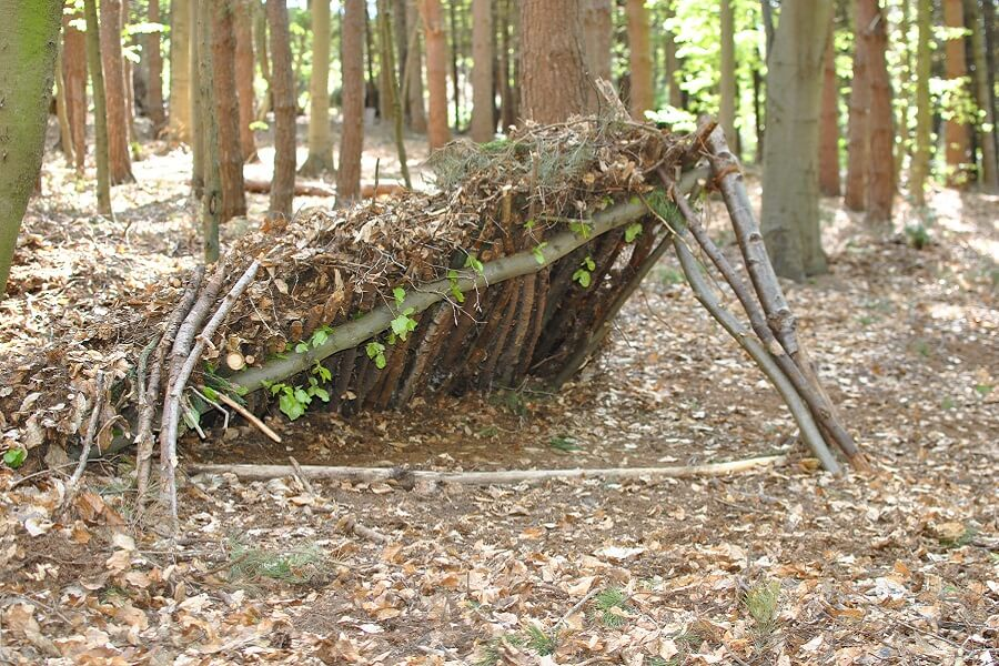 Example of a natural shelter