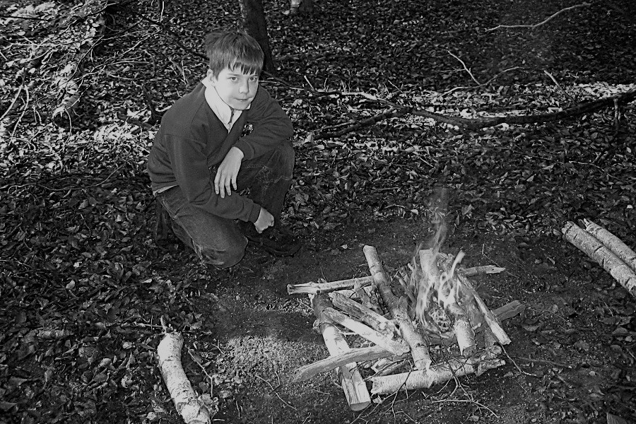 The boy who loved the woods