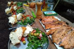 Trout with salad and freshly baked bread - lunch in the woods