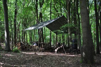 Woodland camp in the Chilterns